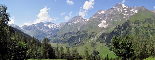 Poster panoramique Hofmann
